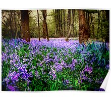 In And Out The Dusty Bluebells Poster