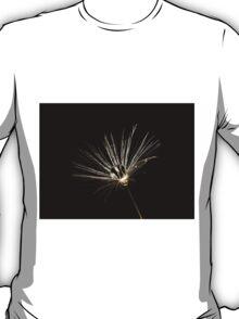 Dandelion Seedhead T-Shirt