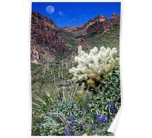 Peralta Canyon Poster