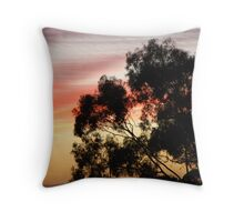Sunsets Over Forster Throw Pillow
