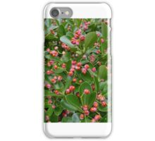 Pink and orange berries  iPhone Case/Skin