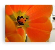 Flower Guts Canvas Print