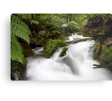 White Water Rafting Metal Print
