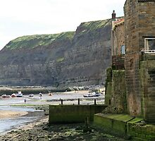 Staithes Harbour by DRWilliams
