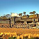 Full Steam Ahead by GailD