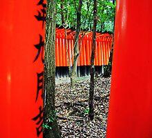 Fushimi Inari Shrine by Greg Hughes