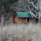 Old Cottage - Sofala NSW by Bev Woodman