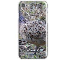 Hen Pheasant (Phasianus colchicus) - Moore Nature Reserve iPhone Case/Skin