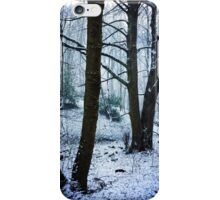 The Woods In Winter iPhone Case/Skin
