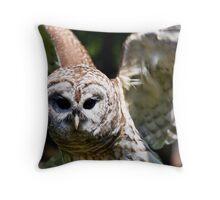 Bard Owl Throw Pillow