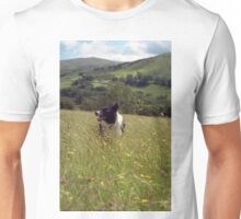 Indy in the wild. Unisex T-Shirt