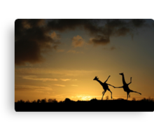 Happy Dancing Giraffes Canvas Print