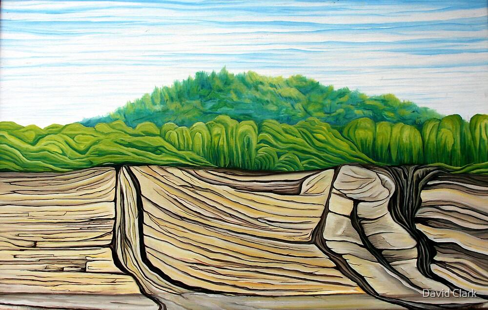 Indiana Riverbank  by David Clark