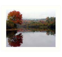 Foliage Season Art Print