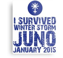 Cool 'I Survived Winter Storm Juno January 2015' T-shirts, Hoodies, Accessories and Gifts Metal Print