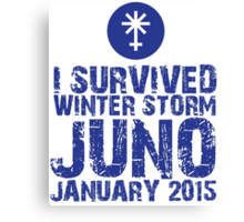 Cool 'I Survived Winter Storm Juno January 2015' T-shirts, Hoodies, Accessories and Gifts Canvas Print