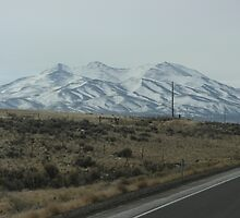 US 93 Nevada by Warrior