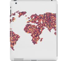 World Map iPad Case/Skin