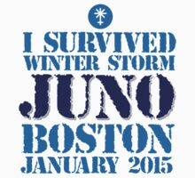 Excellent 'I survived Winter Storm Juno Boston January 2015' T-shirts, Hoodies, Accessories and Gifts by Albany Retro