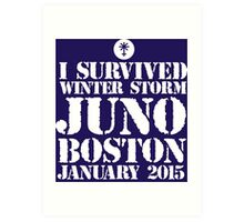 Excellent 'I survived Winter Storm Juno Boston January 2015' T-shirts, Hoodies, Accessories and Gifts Art Print