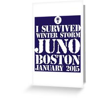 Excellent 'I survived Winter Storm Juno Boston January 2015' T-shirts, Hoodies, Accessories and Gifts Greeting Card