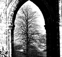 Beyond The Arch by mhphotographyuk