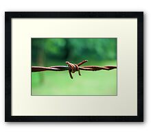 Barbed Framed Print