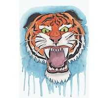 Tiger Watercolor Painting Photographic Print