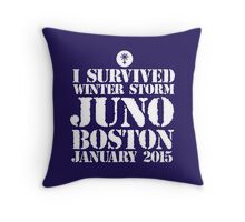 Excellent 'I survived Winter Storm Juno Boston January 2015' T-shirts, Hoodies, Accessories and Gifts Throw Pillow