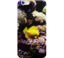 Just Keep Swimming iPhone Case/Skin