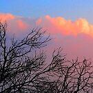 Pink Sky by terezadelpilar~ art & architecture