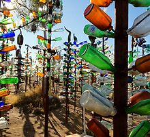 Elmer's Bottle Tree Ranch by jswolfphoto
