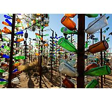 Elmer's Bottle Tree Ranch Photographic Print