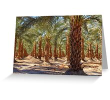 Palm Tree Forest Greeting Card