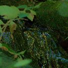Rainforest Waterfall under a Green Moon by RLHall