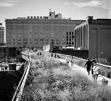 Highline Park Trail - NYC by Brent Olson