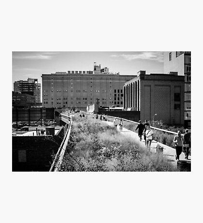 Highline Park Trail - NYC Photographic Print