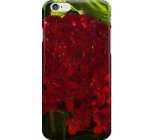 red flower on green - flor roja sobre verde iPhone Case/Skin