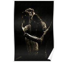 Captive King Poster