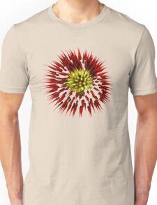 Fireworks Transparent Unisex T-Shirt