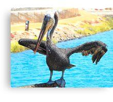 Sweet Pelican Canvas Print