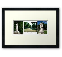 Paris Series 10 Trees in Luxembourg Gardens Framed Print
