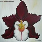Orchide Painting by Marinella  Owens