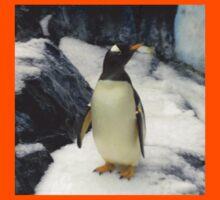 Penguin at Seaworld Orlando, FL Kids Tee