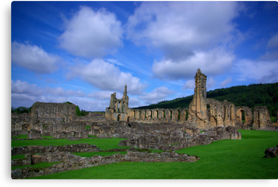 Byland Abbey -3 by Trevor Kersley