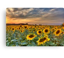 when the sun goes down... Canvas Print