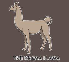 Drama Llama by Kate Trewin
