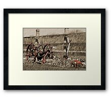 Rust To Dust Framed Print