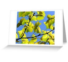 Golden Ginkgo.  Greeting Card