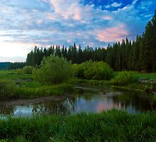 Spring creek by ToddDuvall